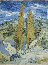 "Vincent van Gogh's ""The Poplars at Saint-Remy"""