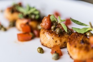 fine-dining-in-the-palm-beaches